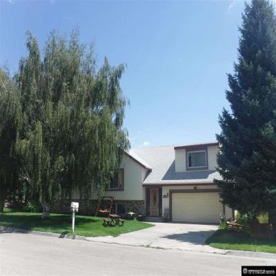 Johnson County foreclosures – 719 Fullerton Ave, Buffalo, WY 82834